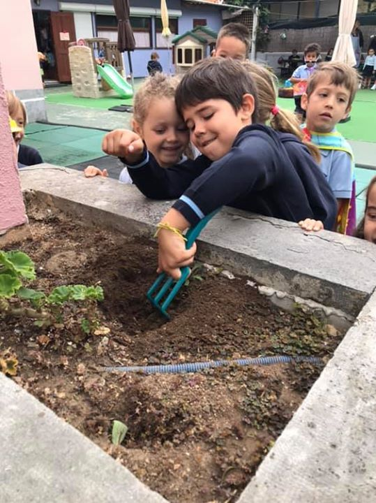 O nosso jardineiro ️️